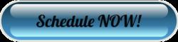 Schedule Now Button